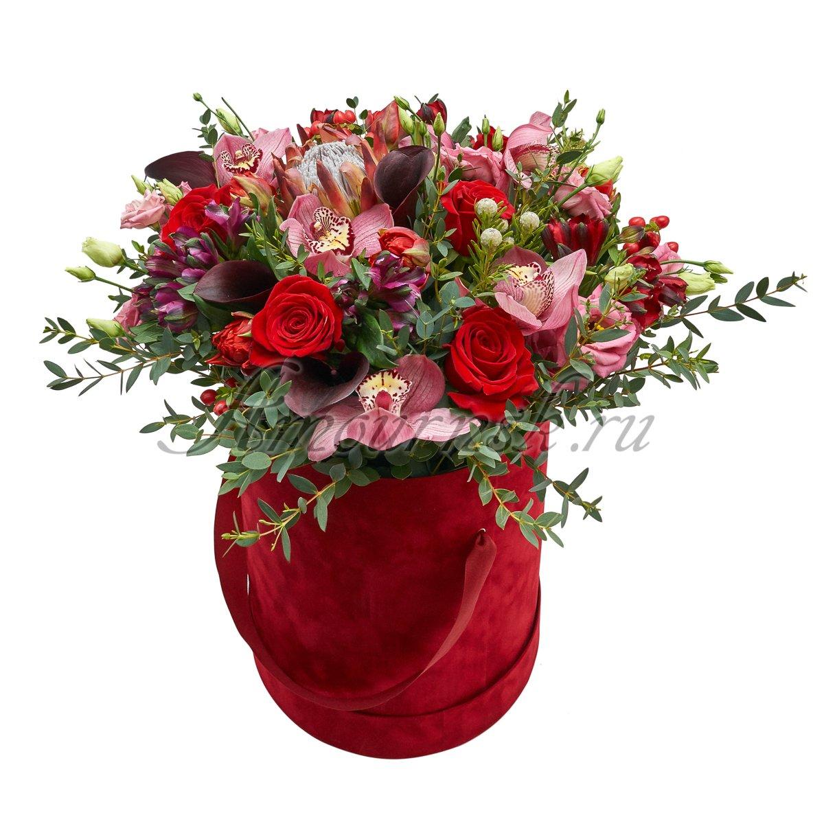 Где купить розы дешево в новосибирске комнатные цветы искусственные в горшочках купить