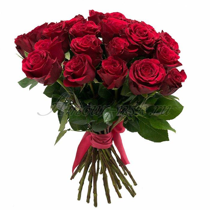Букет «Мишель» из кенийских роз