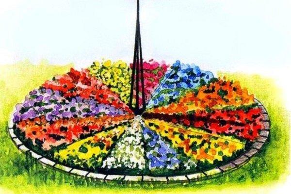 Цветочные часы с гномоном