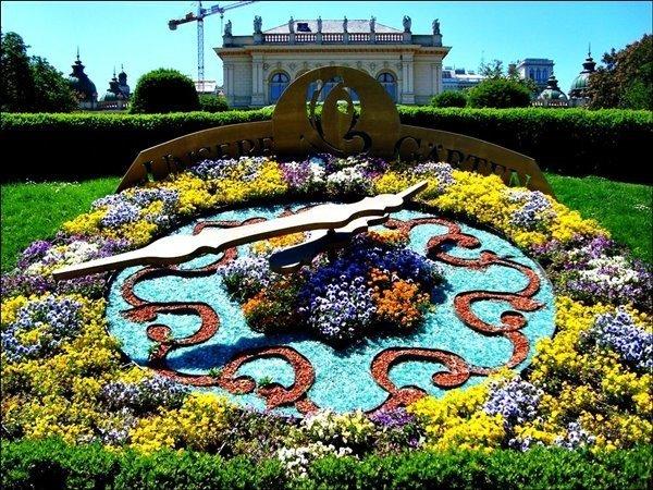 Цветочные часы в Вене